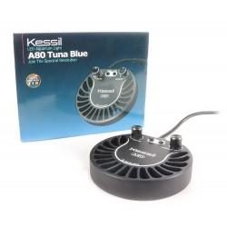 Kessil A80 - Tuna Blue