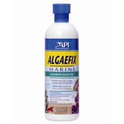 API Algaefix 473ml