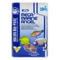 Hikari - Mega Marine Angel