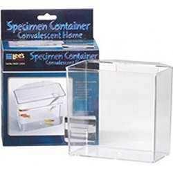 Contenedor LEEs (Specimen Container Home Lees)